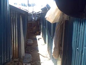 Some of Wanja's Rental Units